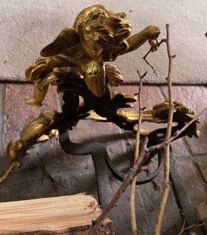 PAIRE DE CHENETS avec les fers en bronze patiné ciselé et doré représentant deux...
