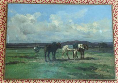 Clément Charles Henri QUINTON (1851–1879)...