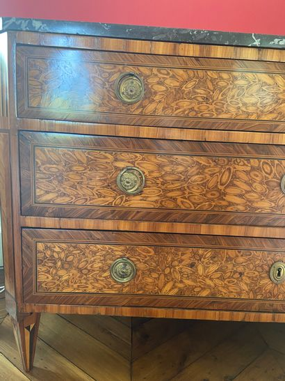 Rectangular chest of drawers, veneered with cytise, violet and amaranth wood in...