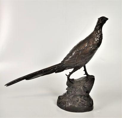 Léon BUREAU (1866-1906) Faisan Bronze à double...