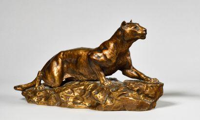 HIPPOLYTE PEYROL (1856-1929) Lionne aux aguets sur un rocher Bronze doré patiné...