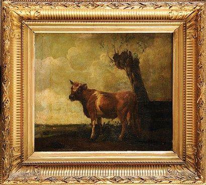 Ecole Hollandaise du XIXème siècle Vache dans un pré Huile sur panneau (parqueté)...