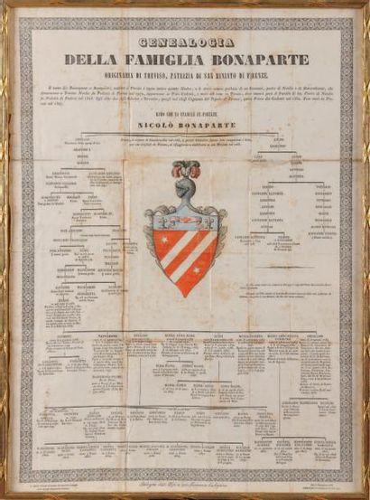 «Genealogia della famiglia Bonaparte.» Gravure...
