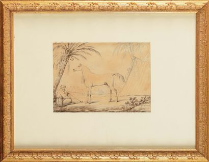 Carle VER NET (1758-1836) «Le cheval de l'Empereur,...