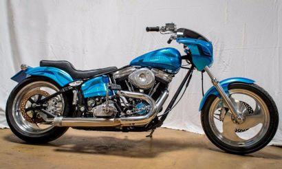 HARLEY DAVIDSON 1340 SOFTAIL Style Arlen...