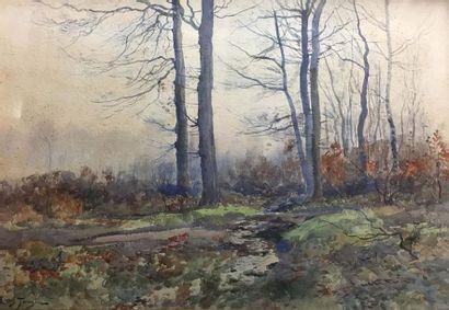 Louis TAUZIN (c.1842-c.1915) Paysage de forêt...