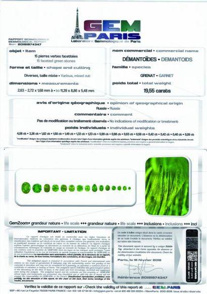 EXCEPTIONNELLE COLLECTION DE GRENATS DEMANTOIDES ET ANDRADITES certifiés du laboratoire...