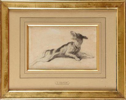 Constant TROYON (1810-1865) Etude de Chien Crayon noir Monogrammé à droite 19 x...