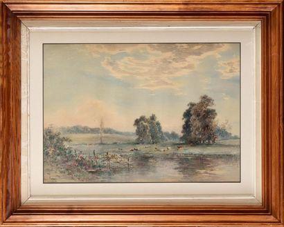 Henri Louis FOREAU (1866-1938) Etang et prairie...