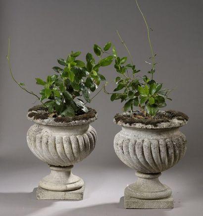 Paire de vases de jardin sur piédouche en...