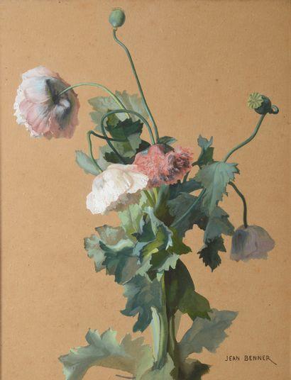 Jean BENNER (1836-1906).    Anémones.    Gouache...
