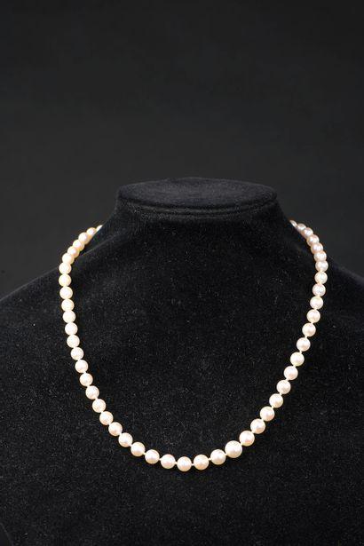 Collier de soixante-et-une perles de culture...