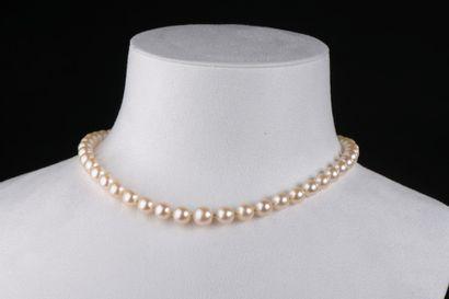Collier choker composé de quarante-cinq perles...
