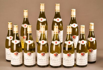 12 bouteilles LADOIX