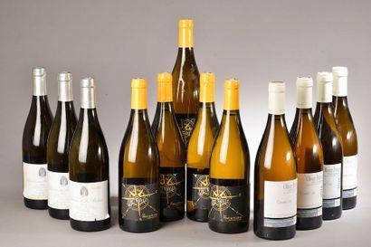 12 bouteilles VINS BLANCS (Côtes Catalanes...