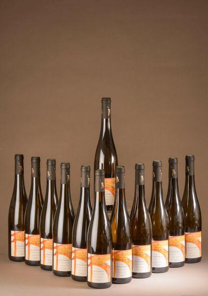 12 bouteilles GEWURZTRAMINER