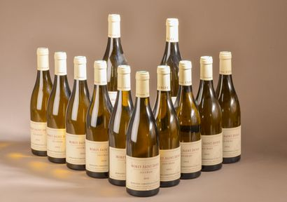 12 bouteilles MOREY-ST-DENIS
