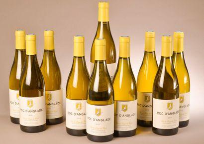 10 bouteilles VDP DU GARD, Roc d'Anglade...