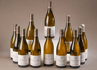 12 bouteilles MEURSAULT
