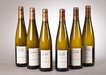 6 bouteilles MUSCAT