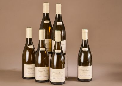 6 bouteilles PULIGNY-MONTRACHET