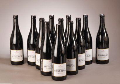 12 bouteilles St NICOLAS DE BOURGUEIL