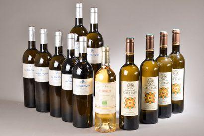 12 bouteilles VINS BLANCS (Jurançon de Souch...