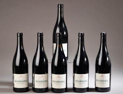 """6 bouteilles BOURGUEIL """"Le Grand Clos"""", Y. Amirault 2017"""