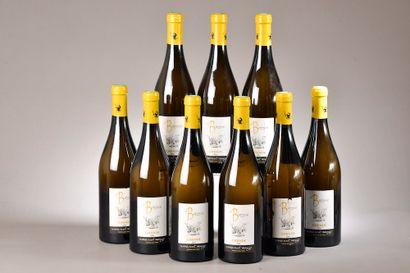 9 bouteilles TOURAINE AMBOISE