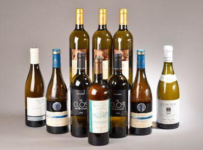 10 bouteilles VINS DIVERS (Limoux, St-Chinian,...