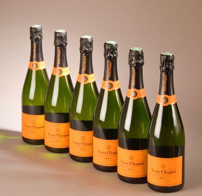 6 bouteilles CHAMPAGNE Veuve Clicquot