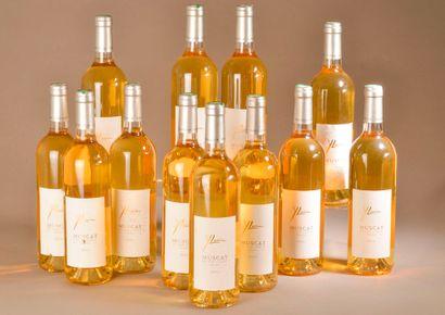 12 bouteilles MUSCAT DU CAP CORSE, Y. Leccia...