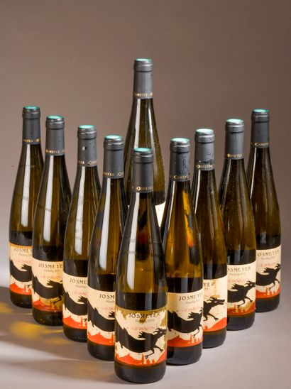 10 bouteilles RIESLING