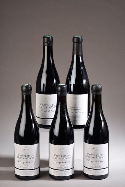5 bouteilles MOULIN-A-VENT