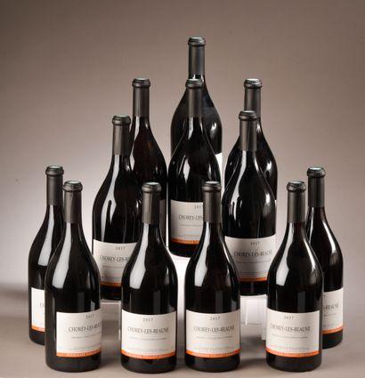 12 bouteilles MORGON