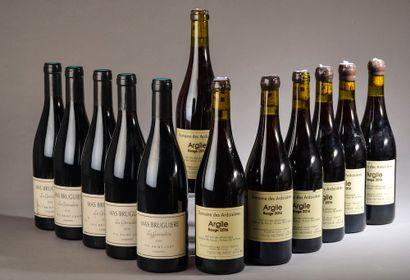 12 bouteilles VINS DIVERS (7 vin des Allobroges...