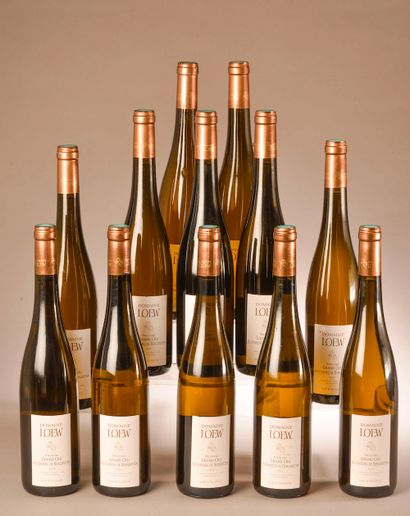 12 bouteilles RIESLING