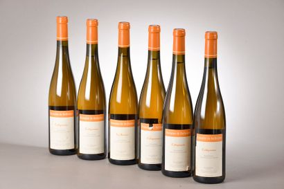 6 bouteilles JASNIÈRES Domaine de BellIvière...