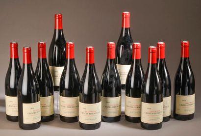 12 bouteilles CROZES-HERMITAGE