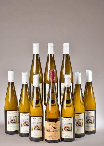 9 bouteilles PINOT GRIS