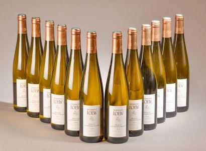 12 bouteilles MUSCAT