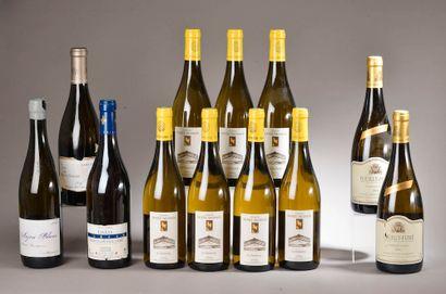 12 bouteilles VINS DE LOIRE (Anjou, Montlouis,...