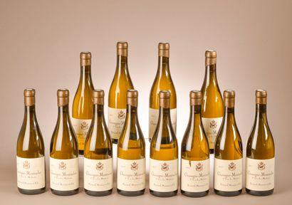 12 bouteilles CHASSAGNE-MONTRACHET