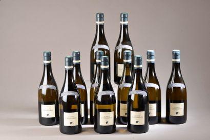 11 bouteilles SANCERRE