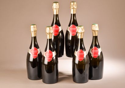 6 bouteilles CHAMPAGNE