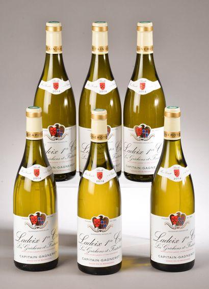 6 bouteilles LADOIX