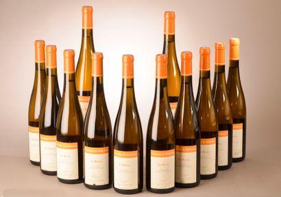 12 bouteilles JASNIÈRES