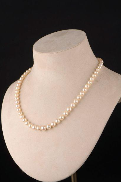 Collier de soixante-cinq perles de culture...