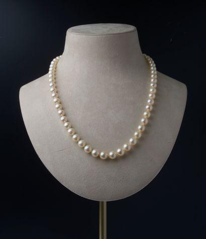 Collier de cinquante-huit perles de culture,...