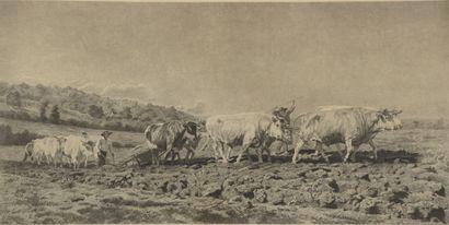 D'après Rosa BONHEUR (1822-1899) gravé par...